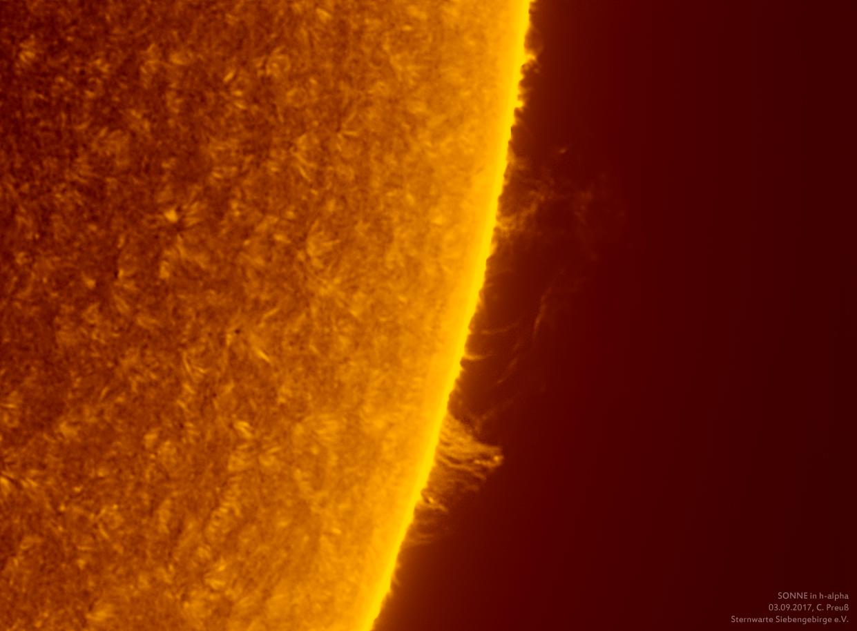 Sonne-kombi-Drizzle-08_g_0176_08b