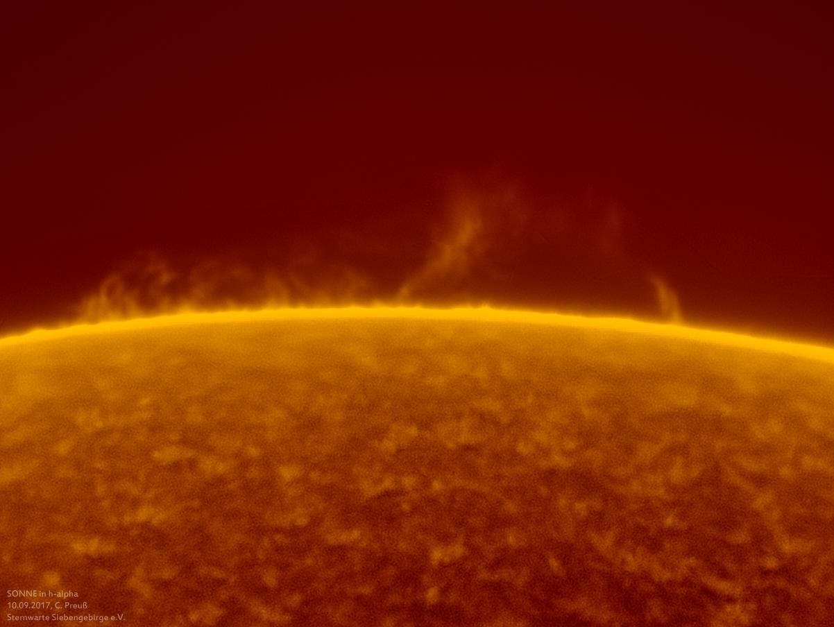 Sonne-kombi-Drizzle-a-und-b-06_g_0163_08b