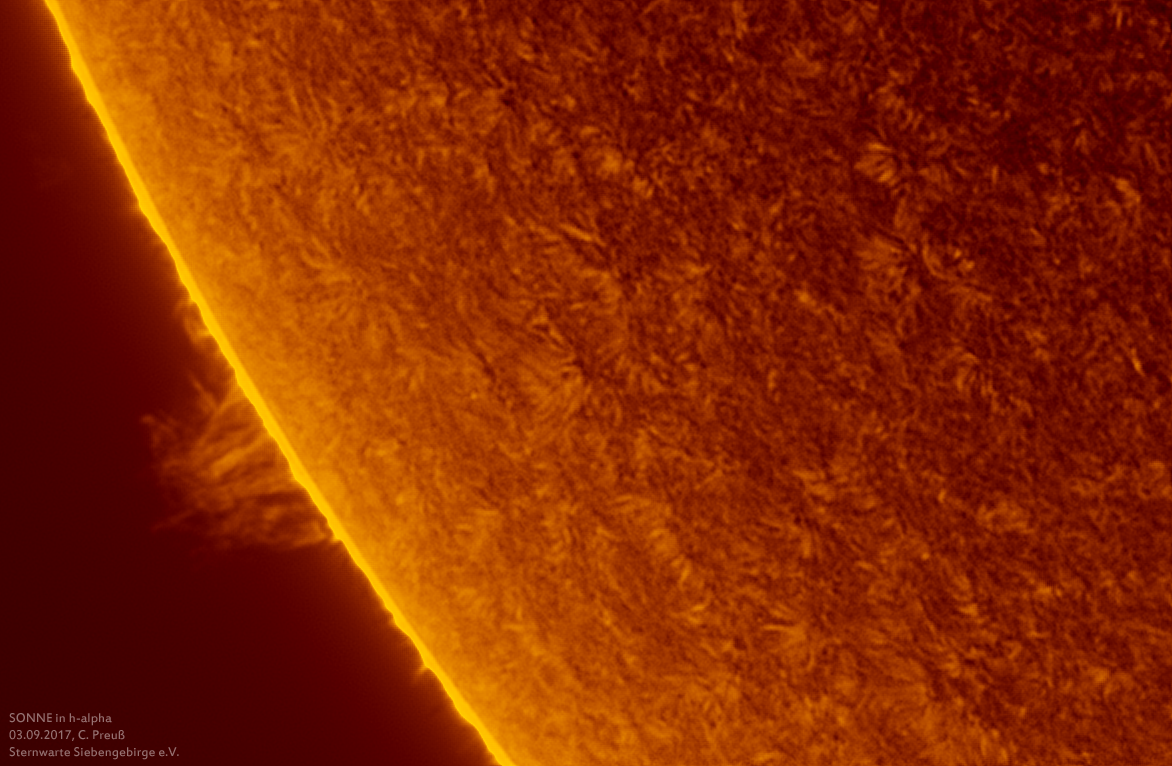 Sonne-kombi-Drizzle-a-und-b-06_g_0168_08b