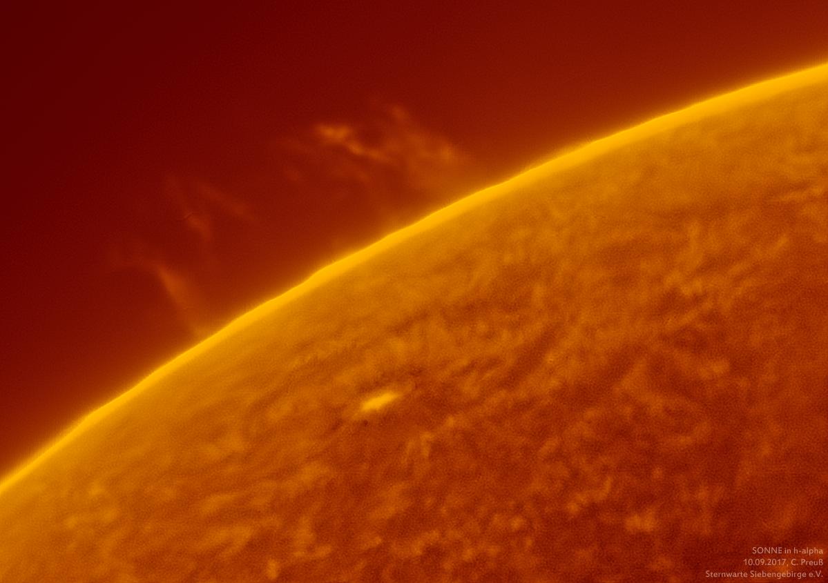 Sonne-kombi-Drizzle-a-und-b-07_g_0168_08b