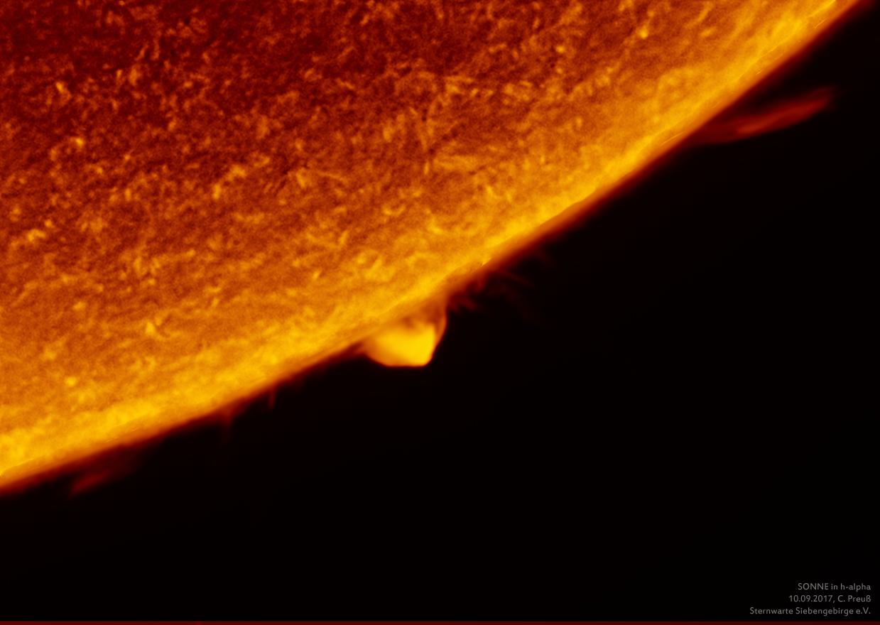 Sonne-kombi-Drizzle-a-und-b-09_g_0198_08b