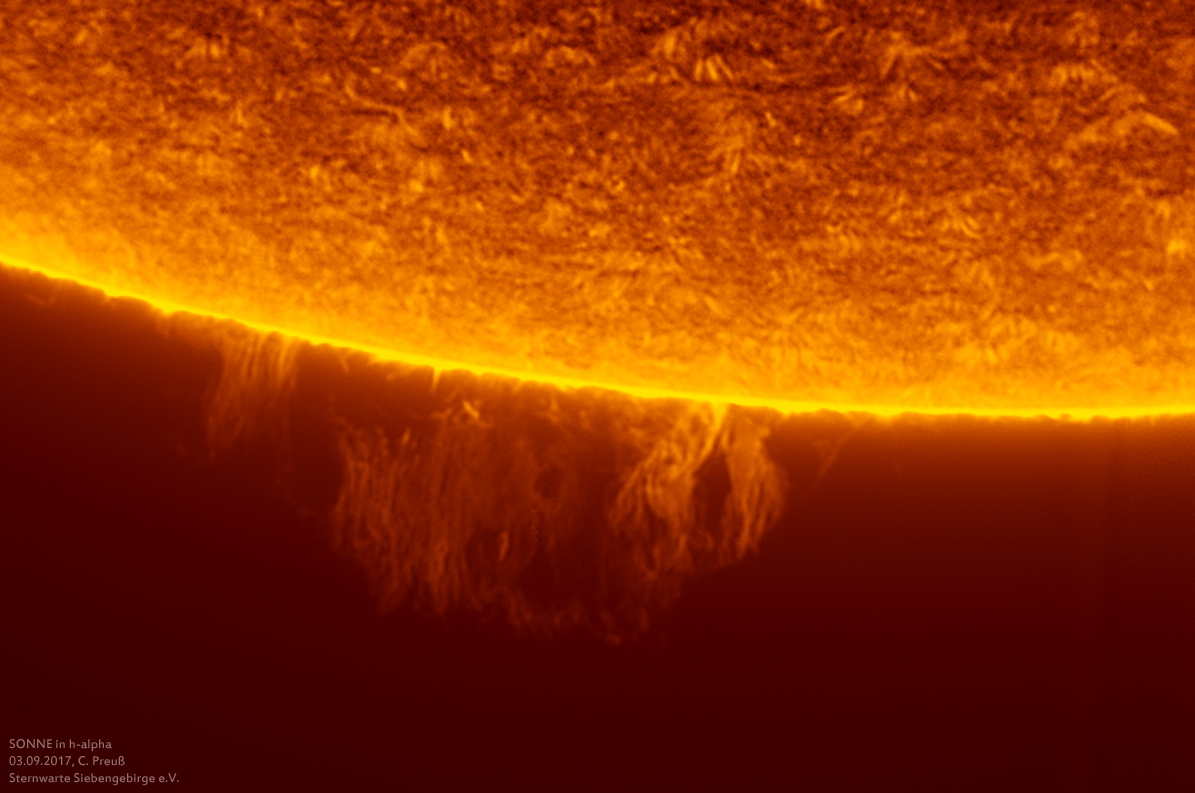 Sonne-kombi-Drizzle-a-und-b-11_g_0181_08b