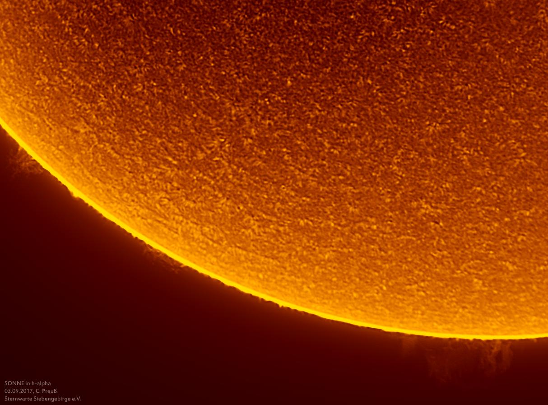 Sonne-kombi-Drizzle-a-und-b-17_g_0198_08b