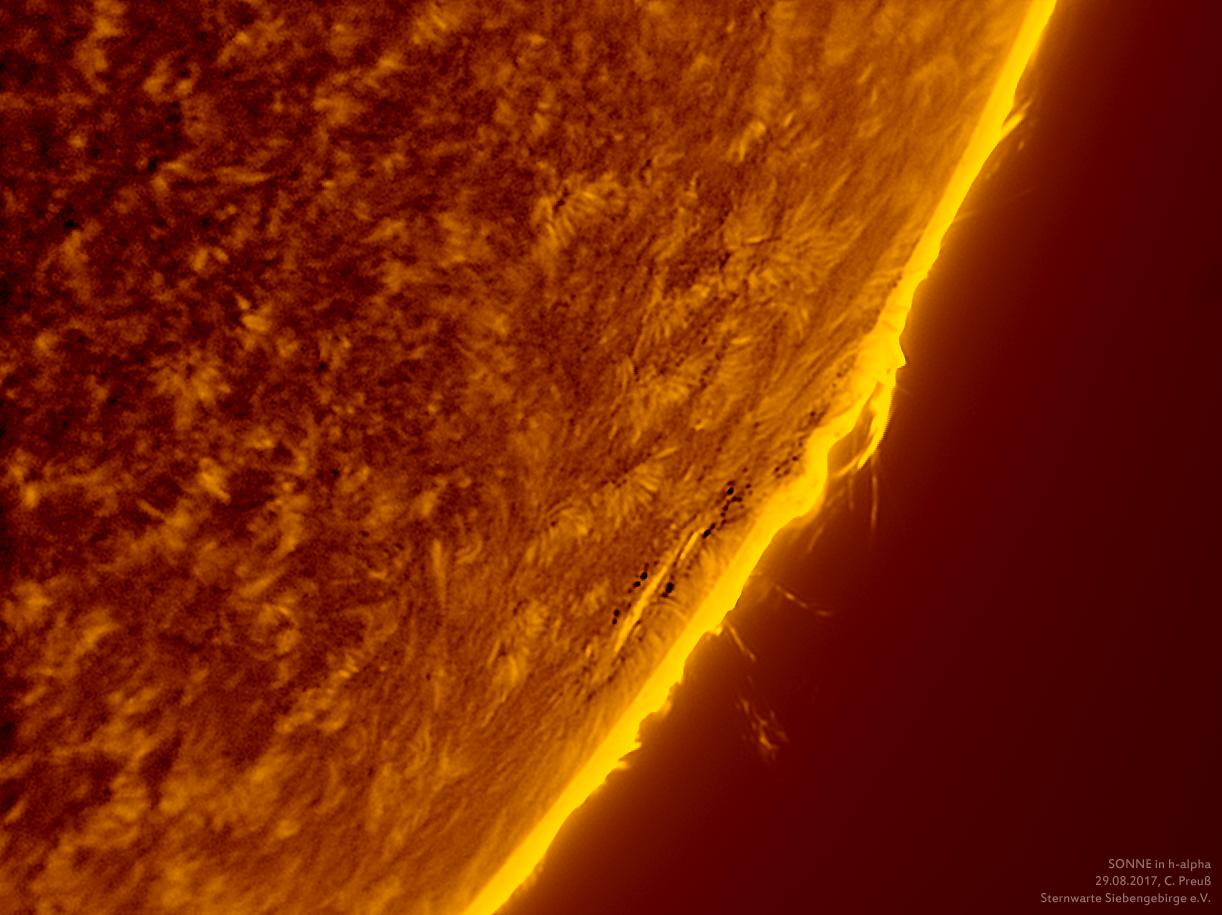 Sonne-kombi-Drizzle-a-und-b-neu-009-b_g_0001_08b