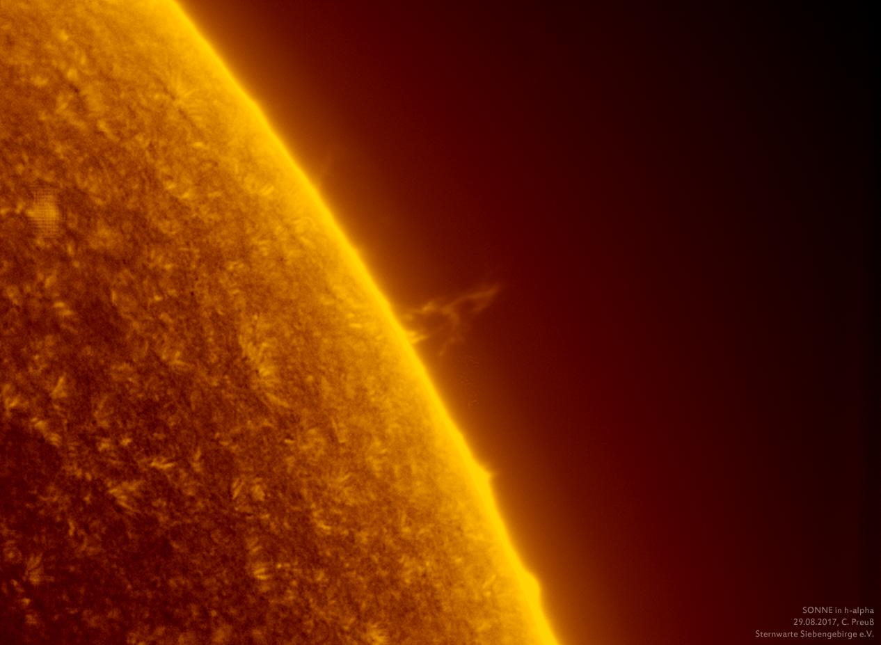 Sonne-kombi-Drizzle-a-und-b-neu-011_g_0198_08b