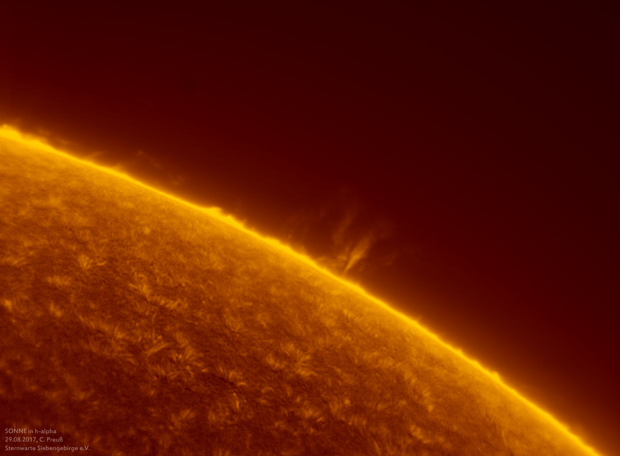 Sonne-kombi-Drizzle-a-und-b-neu-012_g_0215_08b