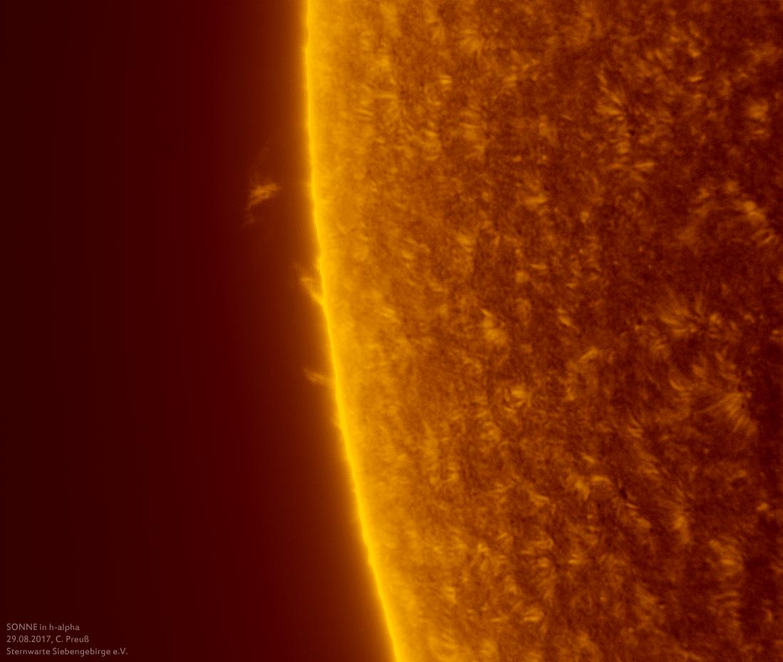 Sonne-kombi-Drizzle-a-und-b-neu-013_g_0163_08b