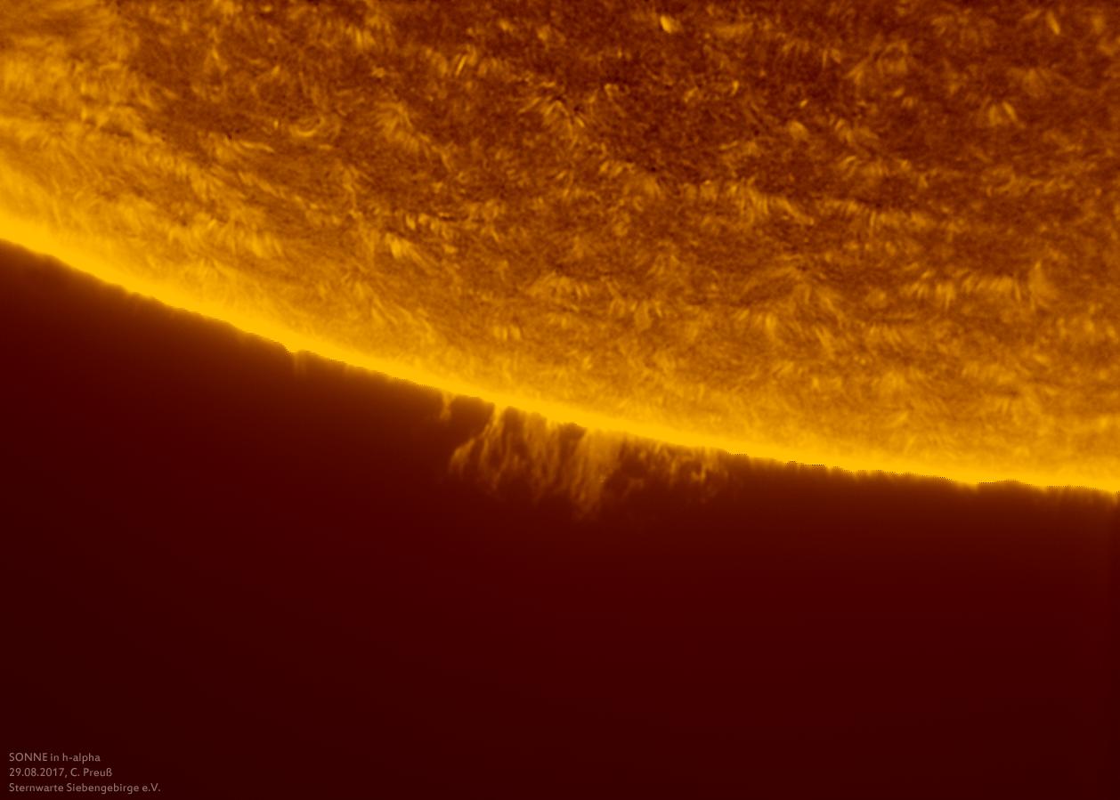 Sonne-kombi-Drizzle-a-und-b-neu-014_g_0176_08b